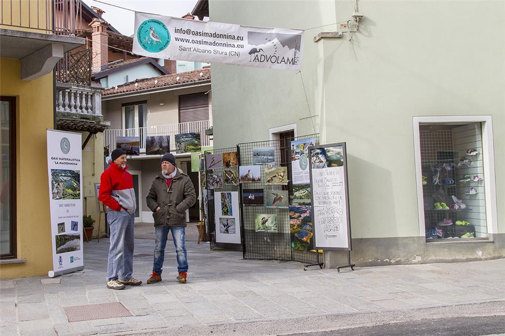 Fera ed' Sant'Alban 2017